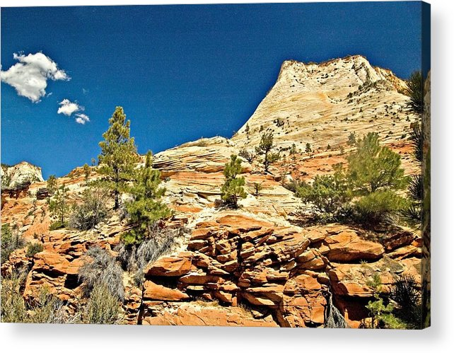National Park Acrylic Print featuring the photograph Zion National Park Vista by Allan Einhorn