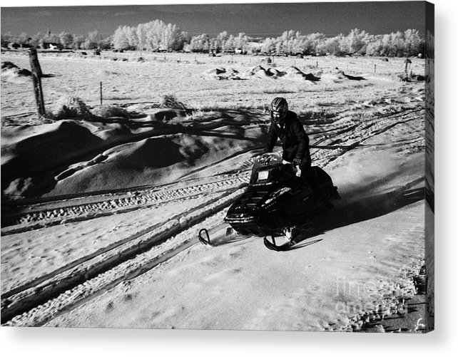 Man Acrylic Print featuring the photograph man on snowmobile crossing frozen fields in rural Forget Saskatchewan Canada by Joe Fox