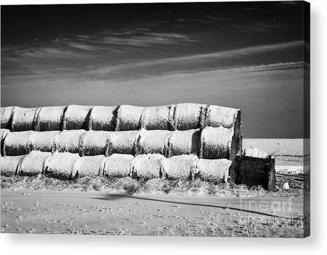Stack Acrylic Print featuring the photograph stack of frozen snow covered hay bales in a field Forget Saskatchewan Canada by Joe Fox
