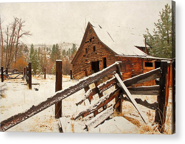 Barns Acrylic Print featuring the photograph Surviving The Elements by Donna Kennedy