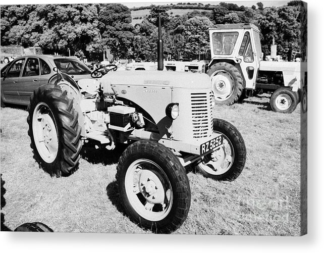 County Acrylic Print featuring the photograph david brown 25D classic tractor during vintage tractor rally at glenarm castle open day county antrim northern ireland by Joe Fox