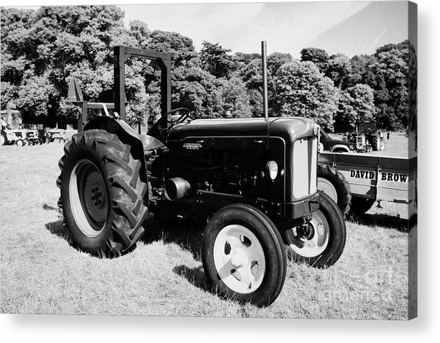 County Acrylic Print featuring the photograph Fordson Major Classic Tractor During Vintage Tractor Rally At Glenarm Castle Open Day County Antrim Northern Ireland by Joe Fox