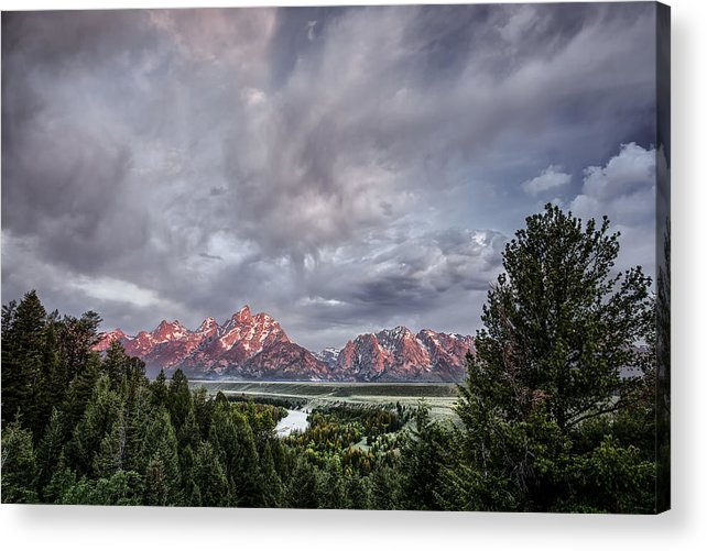 Horizontal Acrylic Print featuring the photograph Grand Treeton by Jon Glaser