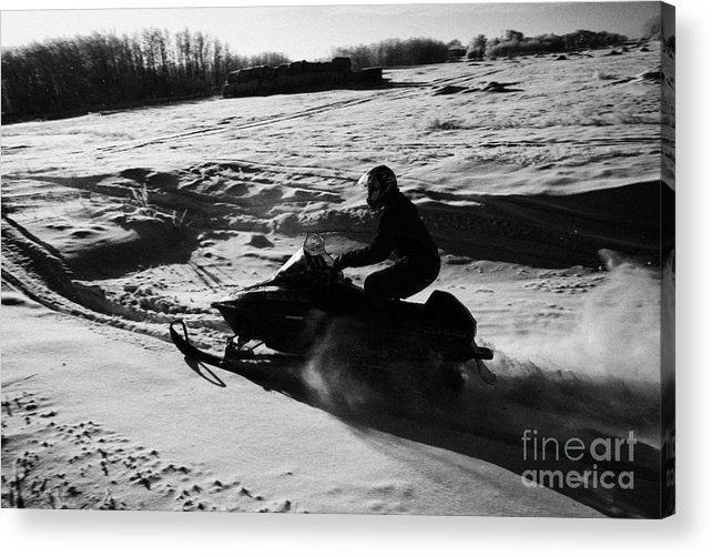 Man Acrylic Print featuring the photograph man on snowmobile crossing frozen fields in rural Forget Saskatchewan by Joe Fox