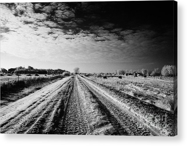 Small Acrylic Print featuring the photograph snow covered untreated rural small road in Forget Saskatchewan Canada by Joe Fox