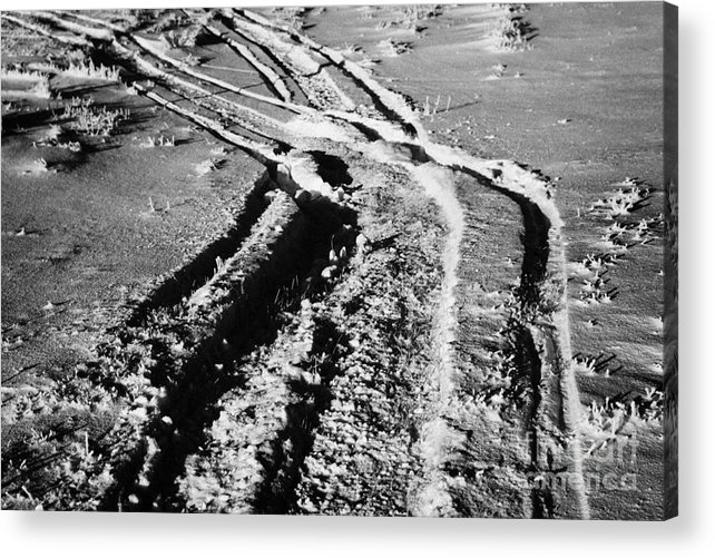 Snowmobile Acrylic Print featuring the photograph snowmobile tracks in snow across frozen field Canada by Joe Fox