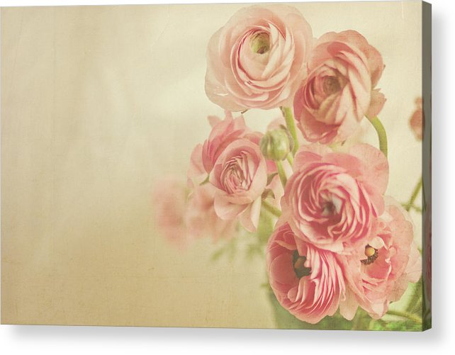 Pink Acrylic Print featuring the photograph Look At Us by Angela Stansell