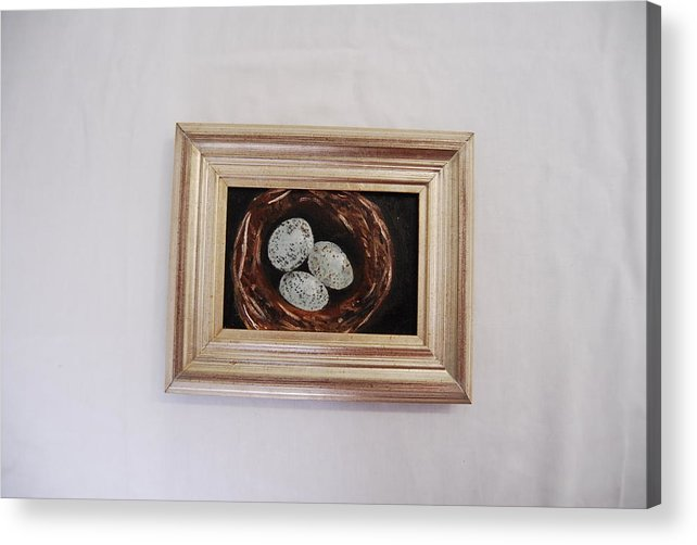 Still Life Of 3 Robin's Eggs Acrylic Print featuring the painting 3 Robin by Marti Kuehn