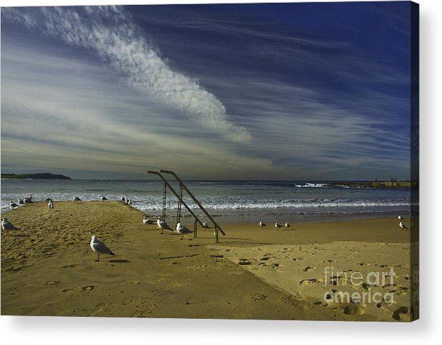 Beach Acrylic Print featuring the photograph Dee Why Beach Sydney by Sheila Smart Fine Art Photography