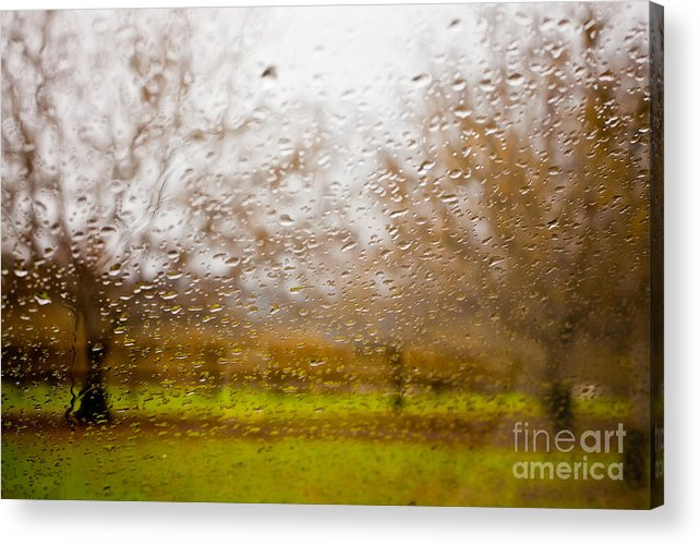 Sonoma County Acrylic Print featuring the photograph Droplets I by Derek Selander