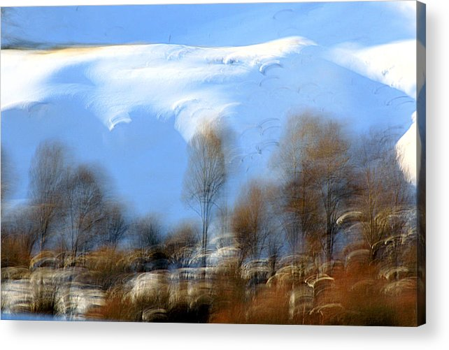 Winter Acrylic Print featuring the photograph icy by Robert Shahbazi