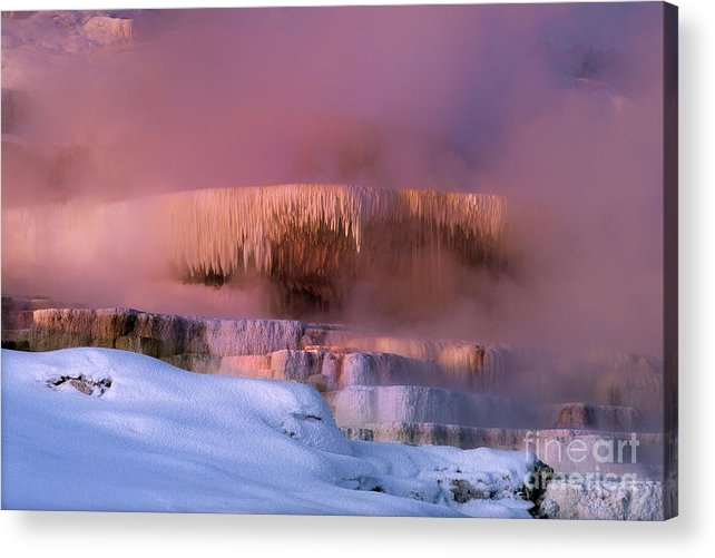 North America Acrylic Print featuring the photograph Limestone Artwork Minerva Springs Yellowstone National Park by Dave Welling