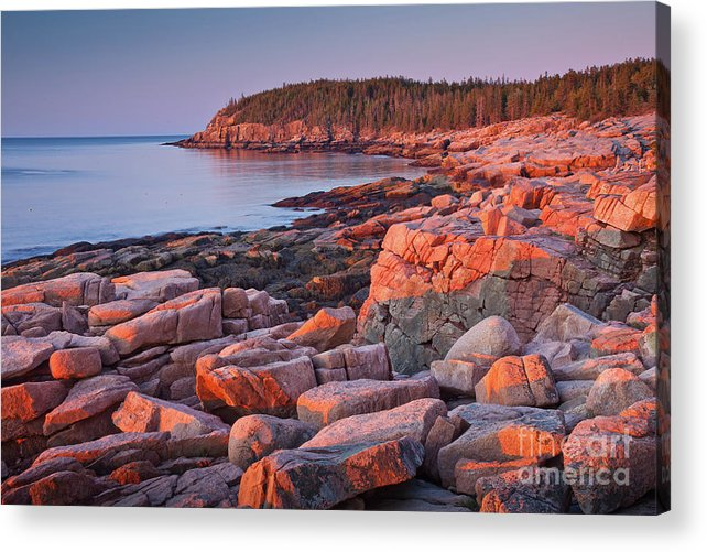 Acadia National Park Acrylic Print featuring the photograph Otter Cliffs by Susan Cole Kelly