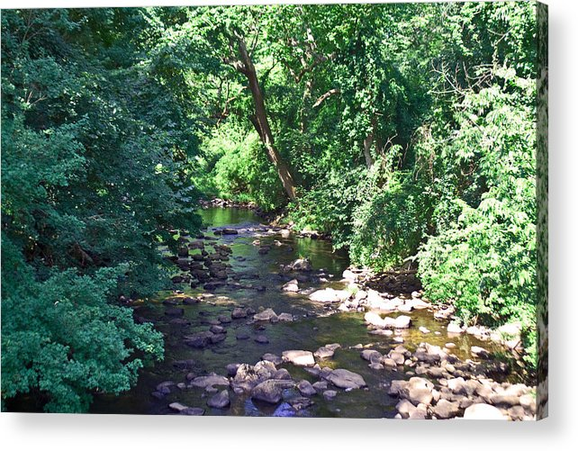 Landscape Acrylic Print featuring the photograph River In August by Gerald Mitchell