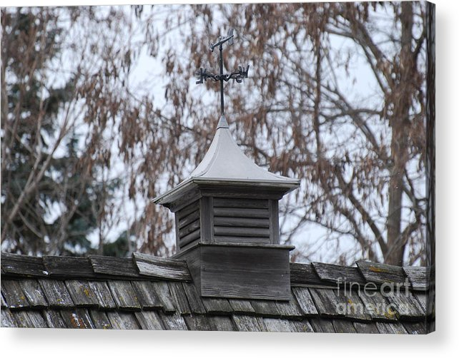 Roof Acrylic Print featuring the photograph Roof Topper by StudioBoldt  Photography