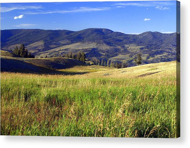 Yellowstone National Park Acrylic Print featuring the photograph Yellowstone Landscape 3 by Marty Koch
