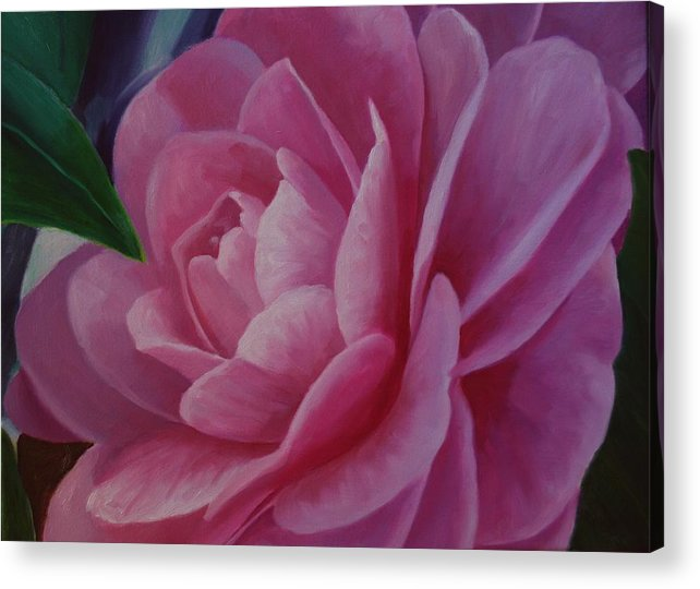 Flower Acrylic Print featuring the painting California Rose by Marilyn Tower