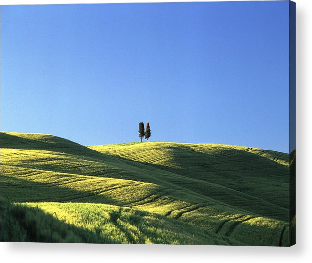 Tuscany Acrylic Print featuring the photograph Tuscan Evening by Michael Hudson