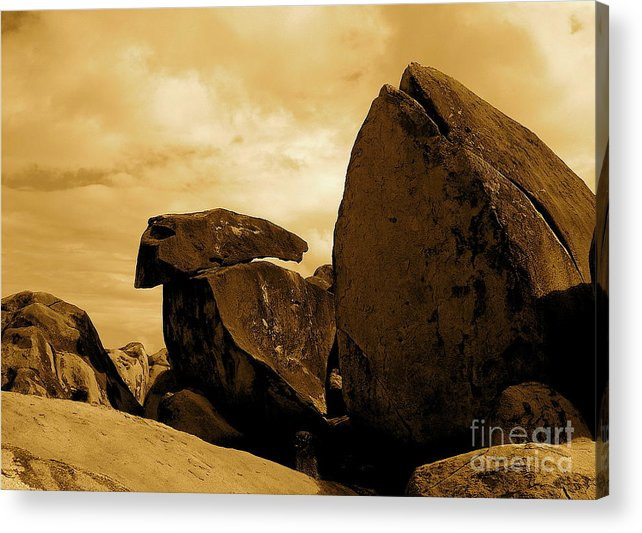 Rocks Acrylic Print featuring the photograph Whale Wolf And Turtle by Sergio Geraldes