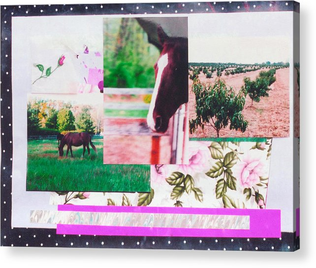 Horse Acrylic Print featuring the mixed media Country Collage 1 by Mary Ann Leitch