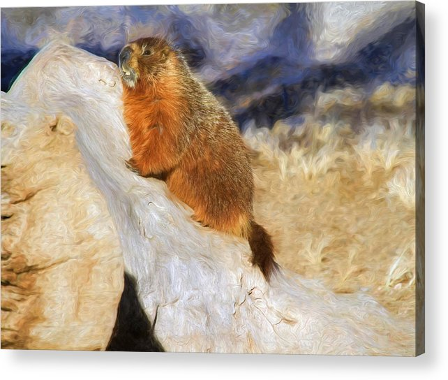 Groundhog Acrylic Print featuring the photograph Mountains To Climb by Donna Kennedy