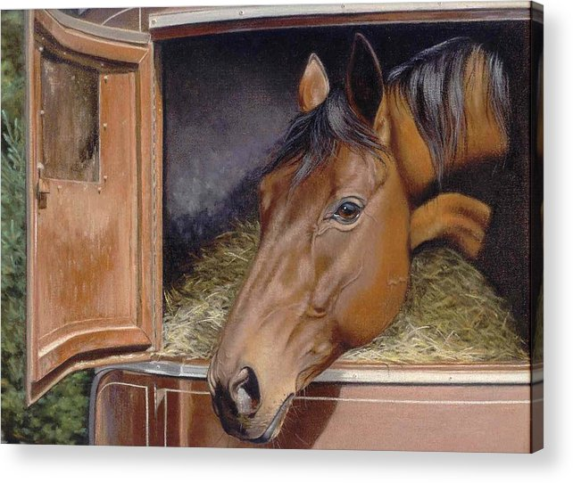 Horse Acrylic Print featuring the painting Peekin... by Deb Owens-Lowe