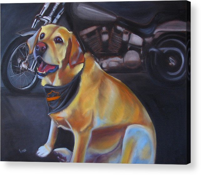 Yellow Labrador Retreiver Painting Acrylic Print featuring the painting George And The Harley by Kaytee Esser