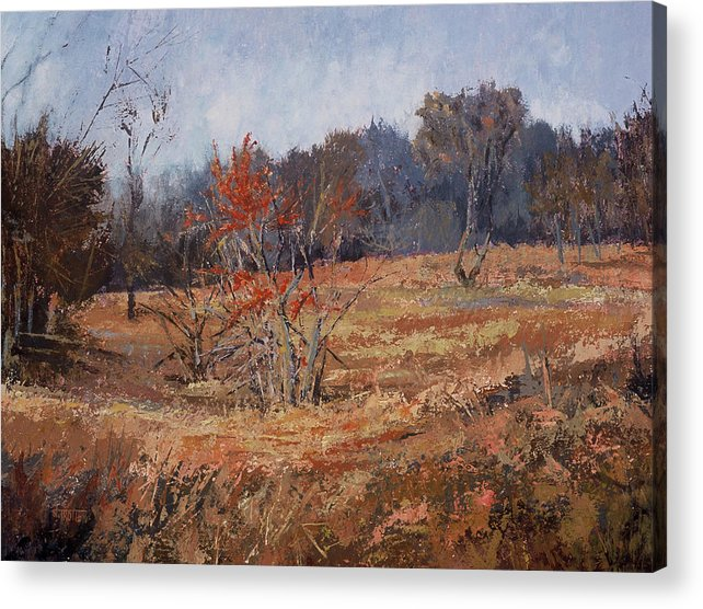 Landscape Acrylic Print featuring the painting November Jewels by Jimmie Trotter
