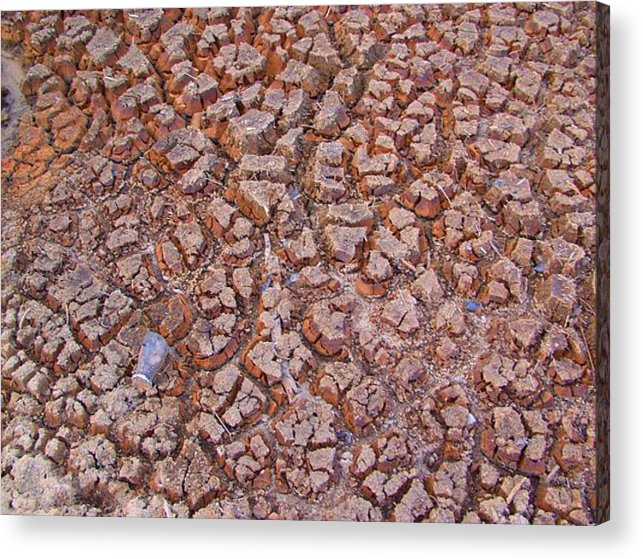 Photographs Acrylic Print featuring the photograph Zen Cracked by Lee Plate