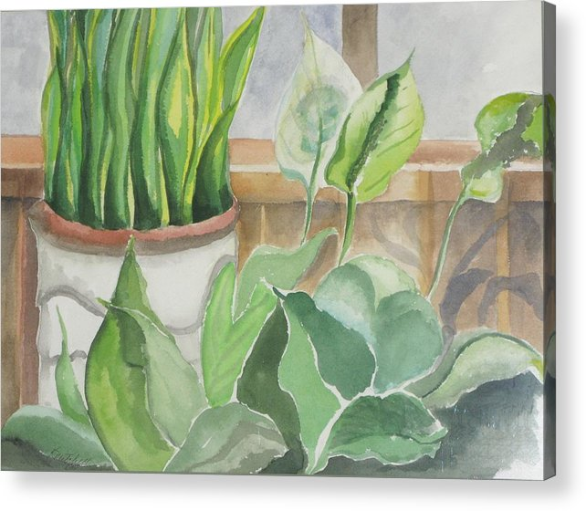 Still Life Acrylic Print featuring the painting Wintergarten by Kathy Mitchell