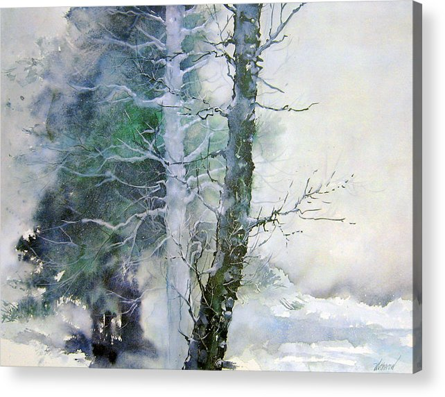 Trees Acrylic Print featuring the painting Alders And Cedar by Dale Witherow
