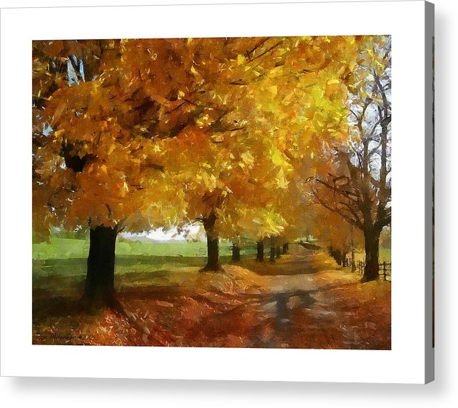 Digital Acrylic Print featuring the photograph Autumn Drive by Ron Alderfer