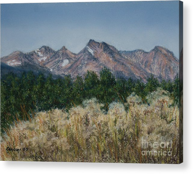 Canada Acrylic Print featuring the painting Thistledown In The Valley by Stanza Widen
