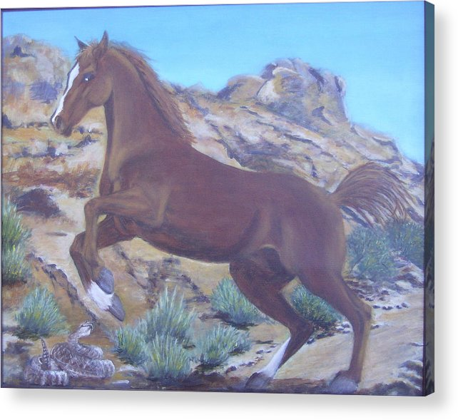 Horse Acrylic Print featuring the painting Valley Of Fire by KC Knight