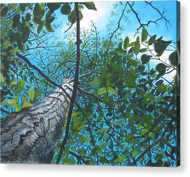 Landscape Acrylic Print featuring the painting Skyward by William Brody