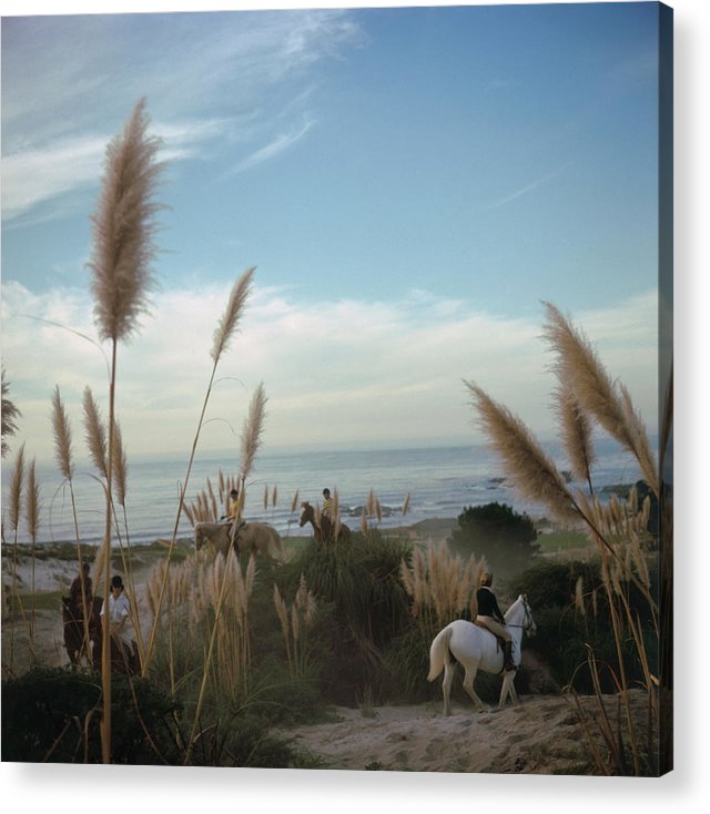 Horse Acrylic Print featuring the photograph Pebble Beach by Slim Aarons