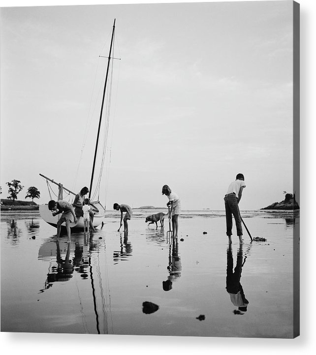 Leverett Saltonstall Acrylic Print featuring the photograph Digging For Clams by Slim Aarons