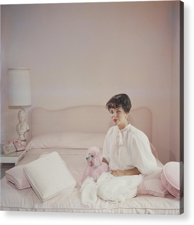 People Acrylic Print featuring the photograph Pink Accessory by Slim Aarons
