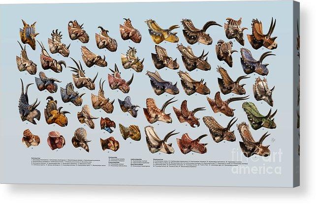 Dinosaur Acrylic Print featuring the digital art Ceratopsian Cornucopia by Julius Csotonyi