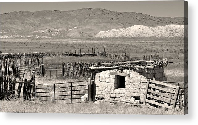 Nevada Acrylic Print featuring the photograph Field Of Dreams by Everett Bowers