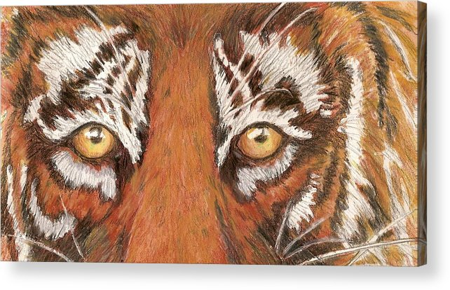 Tiger Acrylic Print featuring the painting Tiger Eyes 2 by Patricia R Moore