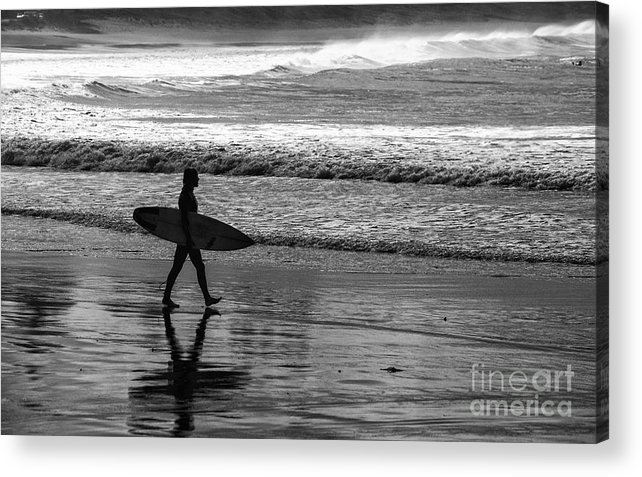 Surfer Acrylic Print featuring the photograph Surfer at Palm Beach by Sheila Smart Fine Art Photography