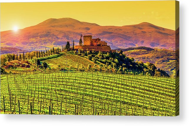 Scenics Acrylic Print featuring the photograph Vineyard In Tuscany by Deimagine
