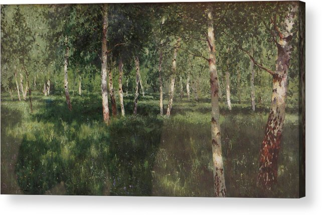 Isaac Levitan Acrylic Print featuring the painting Birch Grove by Isaac Levitan