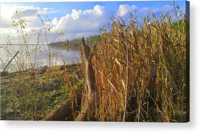 Fort Watson Acrylic Print featuring the photograph Fort Watson Beach by Noel Adams