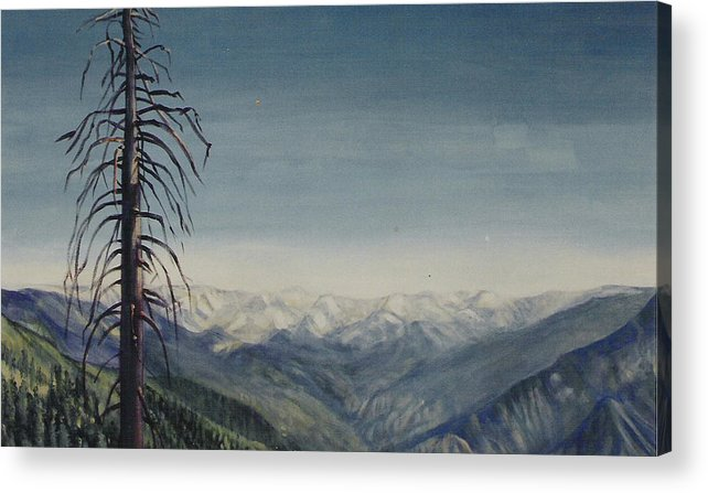 Sequoia National Park Acrylic Print featuring the painting Sky blue by Howard Stroman