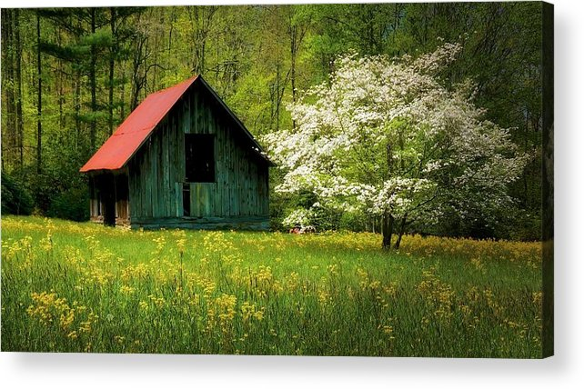 Blue Ridge Mountains Acrylic Print featuring the photograph Spring and the Barn by Zayne Diamond Photographic