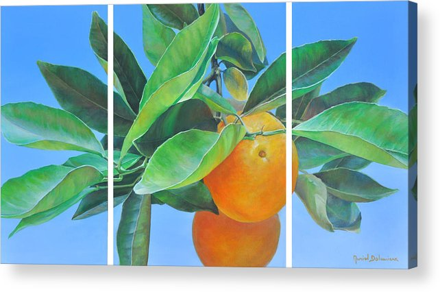 Acrylic Painting Acrylic Print featuring the painting Triptyque Orange by Muriel Dolemieux