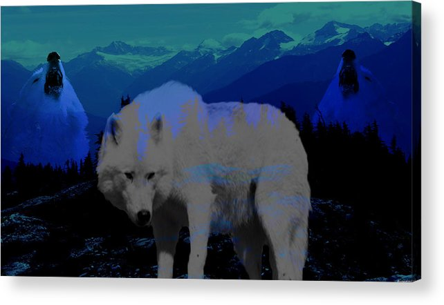 Wolves Acrylic Print featuring the photograph White wolves by Evelyn Patrick