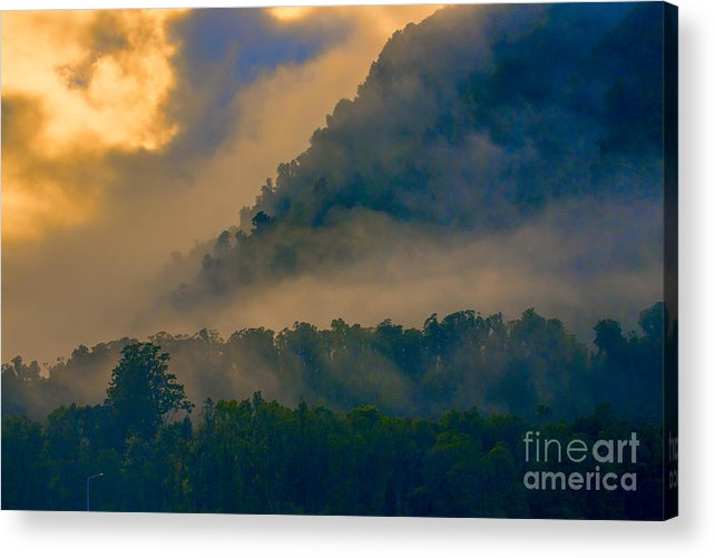 Trees Acrylic Print featuring the photograph Mist amongst trees by Sheila Smart Fine Art Photography